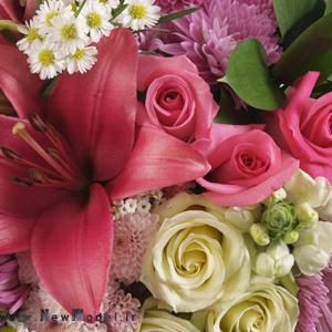 دانلود+آهنگ+شاد+دسته+گل+عروس